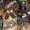 Сноуборд, ботинки, крепления #583309